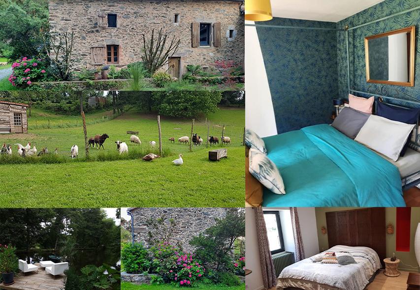 Gîte et chambres d'hôtes : location près du Puy du Fou en Vendée